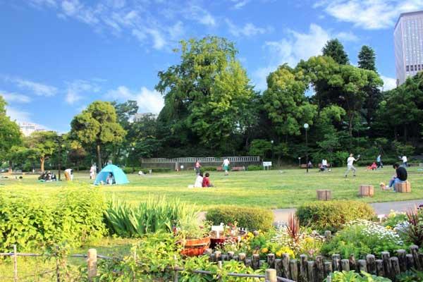 アウトドア 公園